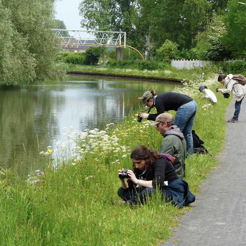 Sciences participatives 2.0 : Concept du Museum National d'Histoire Naturelle